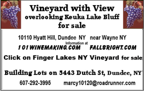 10110 Hyatt Hill, Dundee, NY 14837 vineyard for sale